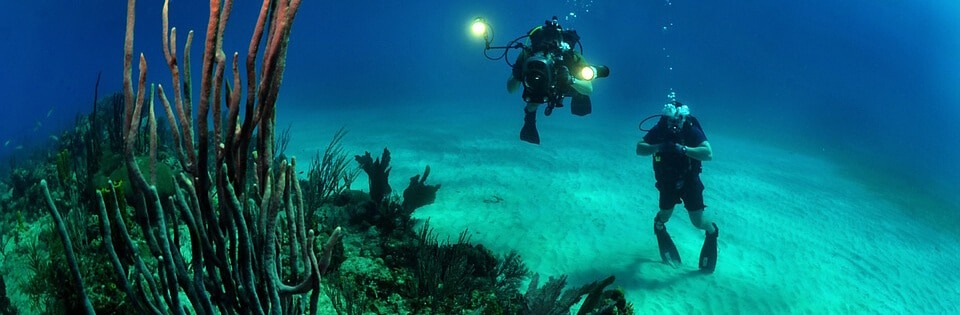 Assicurazione per subacquei: come farla e quanto costa?