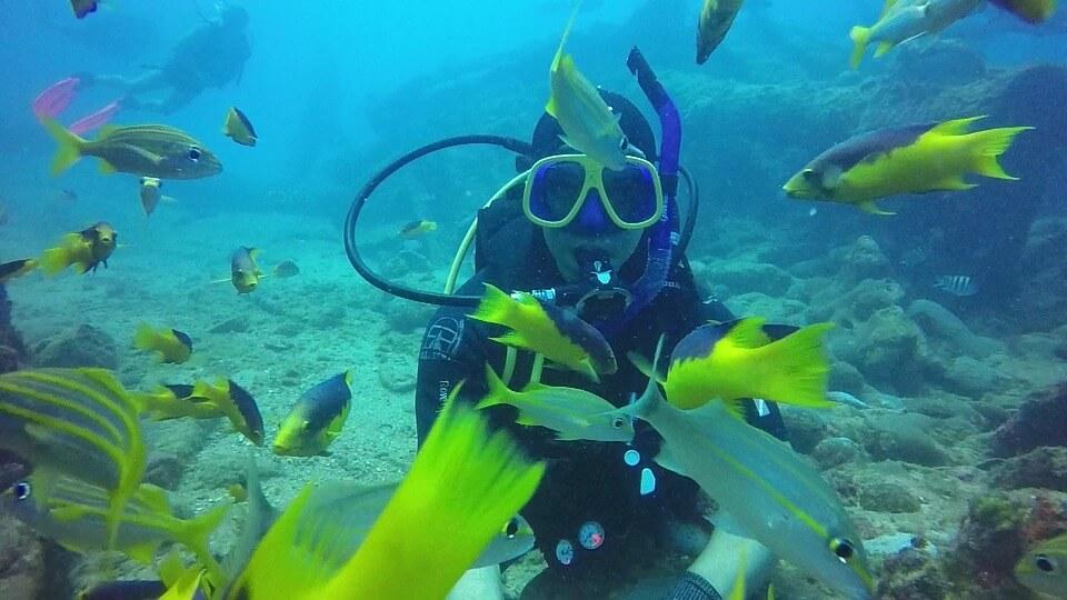 Assicurazione per subacquei